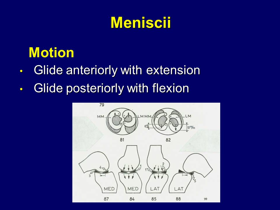 Meniscii Glide anteriorly with extension Glide anteriorly with extension Glide posteriorly with flexion Glide posteriorly with flexion Motion