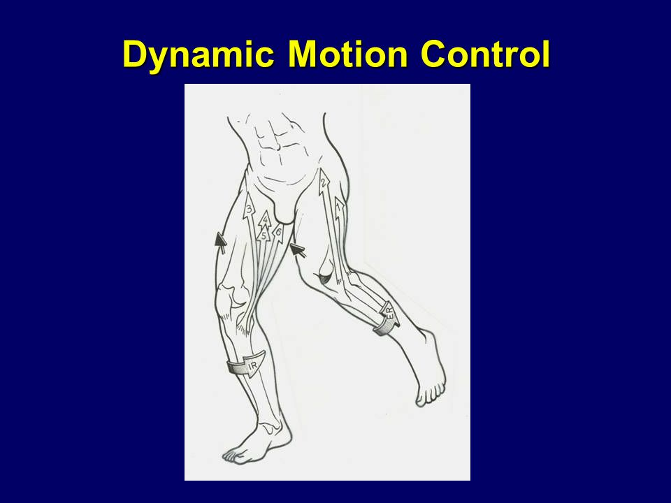Dynamic Motion Control