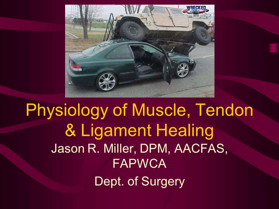 Physiology of Muscle, Tendon & Ligament Healing Jason R. Miller, DPM, AACFAS, FAPWCA Dept. of Surgery