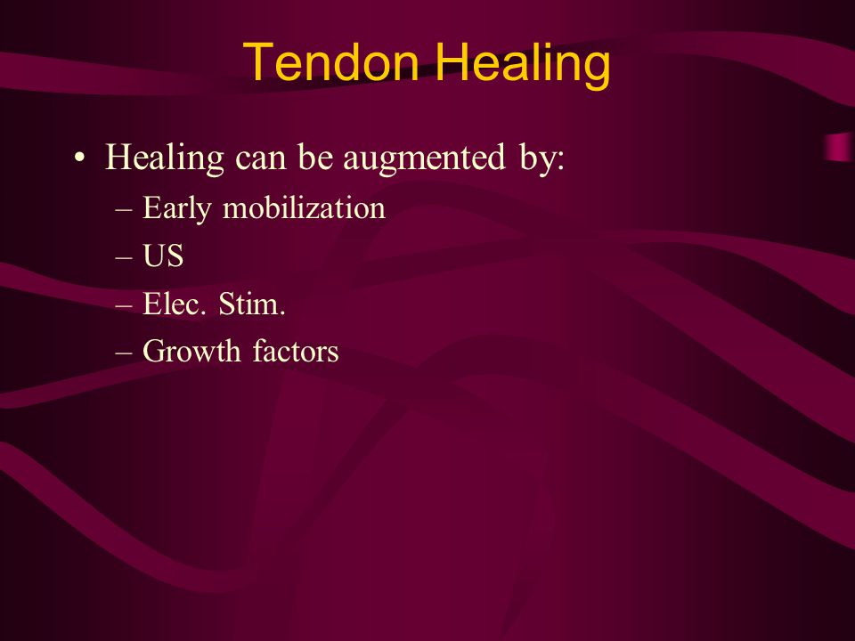 Tendon Healing Healing can be augmented by: –Early mobilization –US –Elec. Stim. –Growth factors