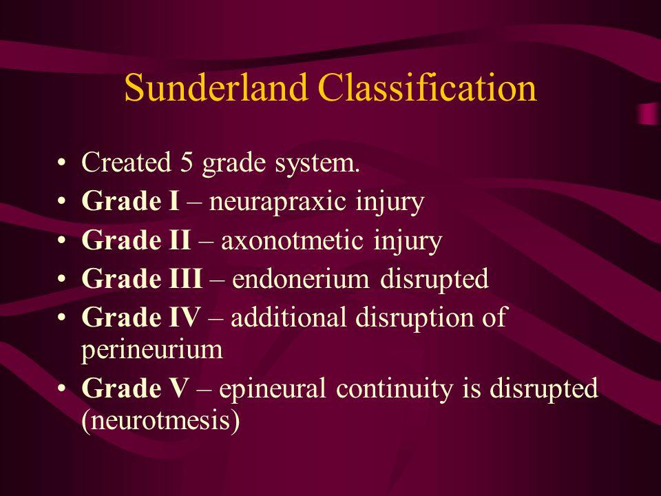 Sunderland Classification Created 5 grade system. Grade I – neurapraxic injury Grade II – axonotmetic injury Grade III – endonerium disrupted Grade IV