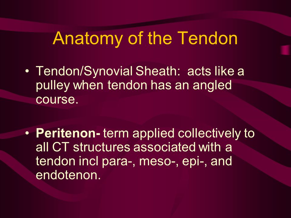 Tendon Lengthening Muscle strength will be reduced by one grade (Polio Foundation) once healed.