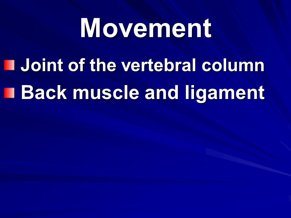 Movement Joint of the vertebral column Joint of the vertebral column Back muscle and ligament Back muscle and ligament