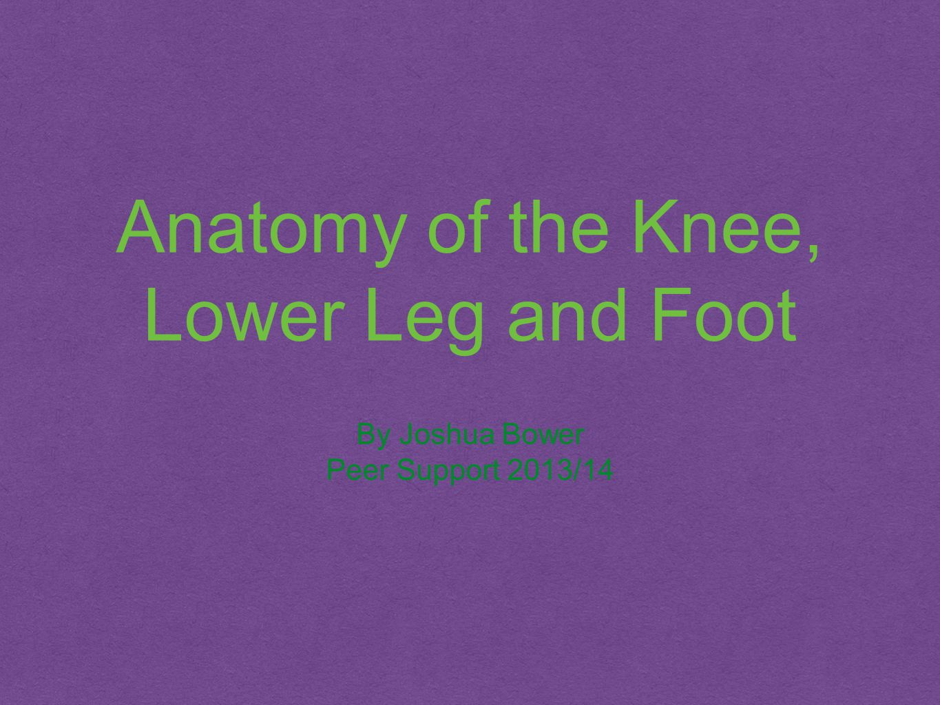 Anatomy of the Knee, Lower Leg and Foot By Joshua Bower Peer Support 2013/14