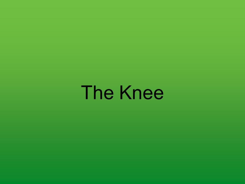 The Knee