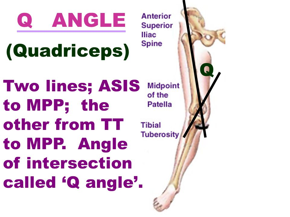 Q Q ANGLE (Quadriceps) Two lines; ASIS to MPP; the other from TT to MPP. Angle of intersection called 'Q angle'.