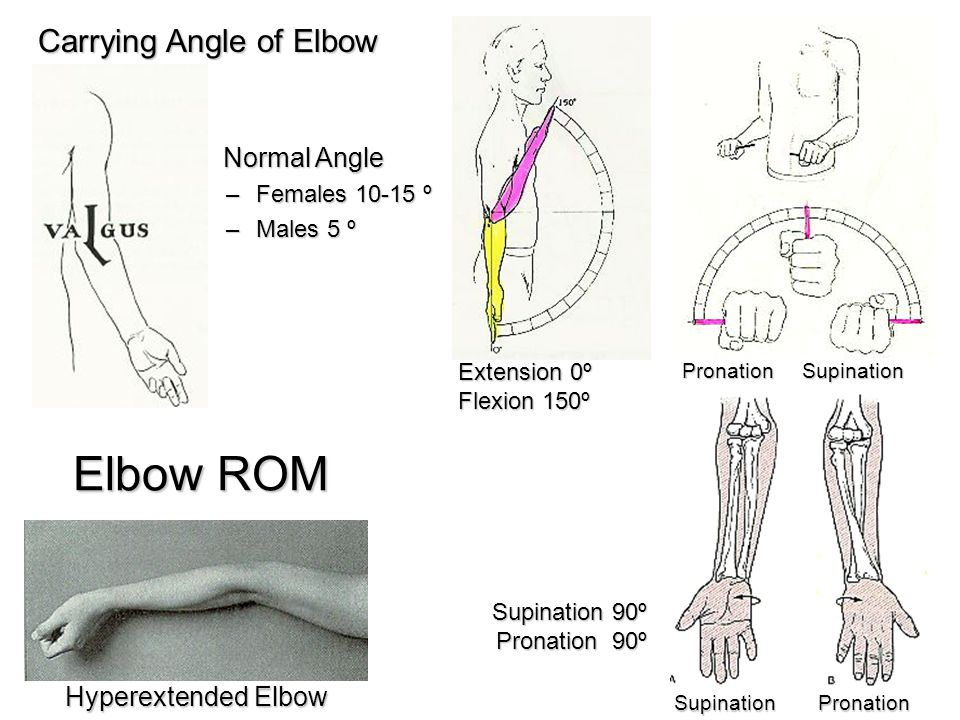Elbow ROM SupinationPronation PronationSupination Extension 0º Flexion 150º Supination 90º Pronation 90º Carrying Angle of Elbow Normal Angle Normal A