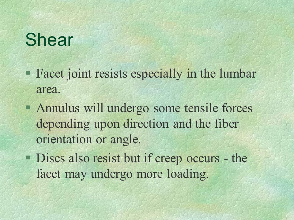 Shear §Facet joint resists especially in the lumbar area. §Annulus will undergo some tensile forces depending upon direction and the fiber orientation