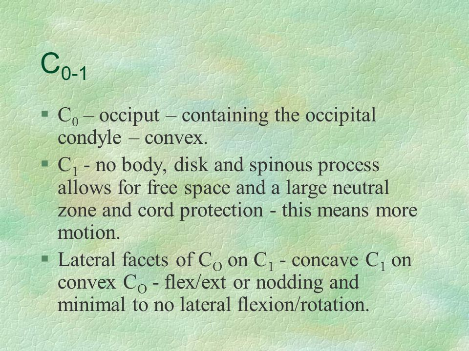 C 0-1 §C 0 – occiput – containing the occipital condyle – convex. §C 1 - no body, disk and spinous process allows for free space and a large neutral z