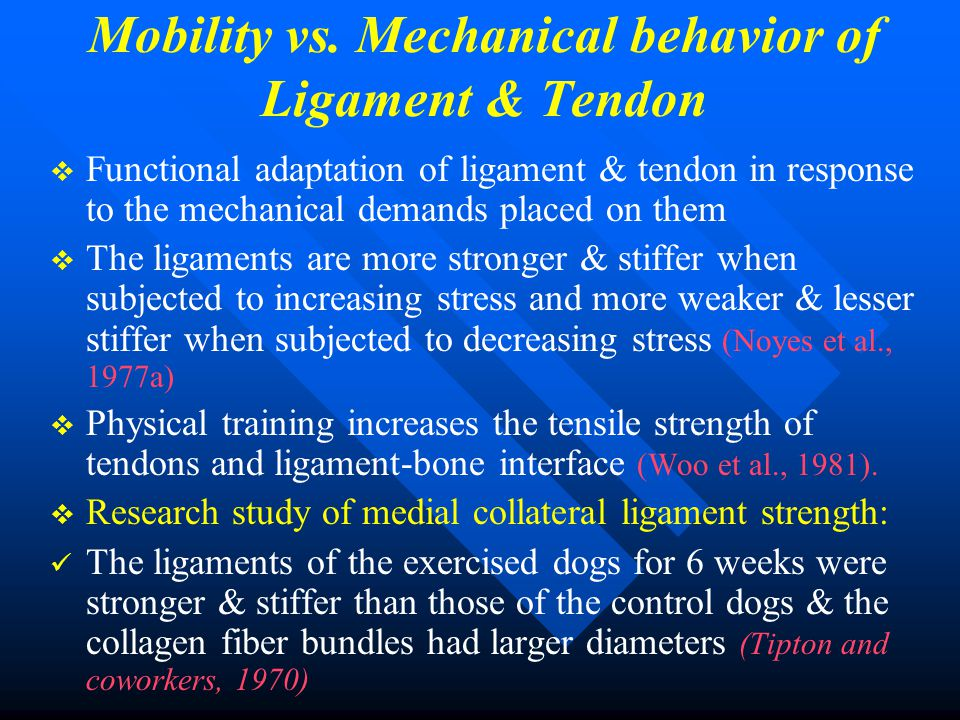 Mobility vs. Mechanical behavior of Ligament & Tendon   Functional adaptation of ligament & tendon in response to the mechanical demands placed on t