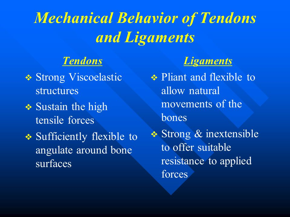 Mechanical Behavior of Tendons and Ligaments Tendons   Strong Viscoelastic structures   Sustain the high tensile forces   Sufficiently flexible