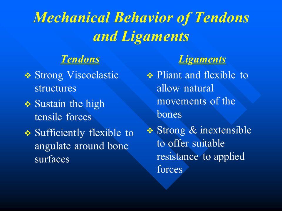 Grading of Tendinopathy   Descriptive Grading of Tendinopathy ….