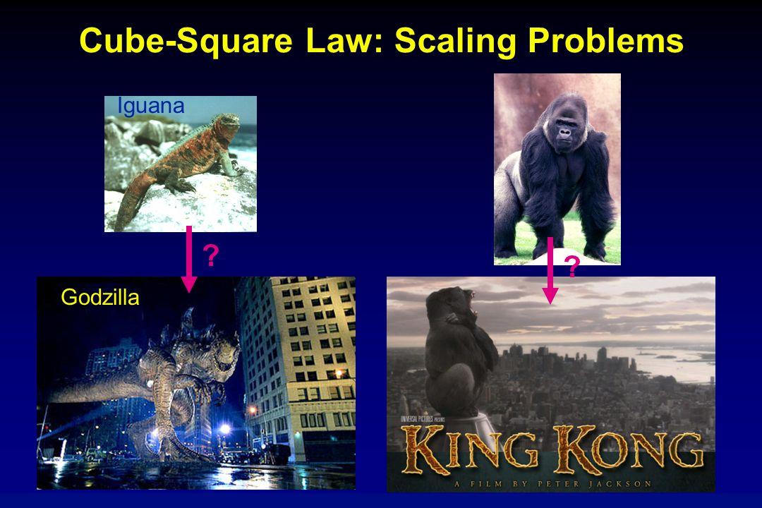 Cube-Square Law: Scaling Problems ? ? Iguana Godzilla