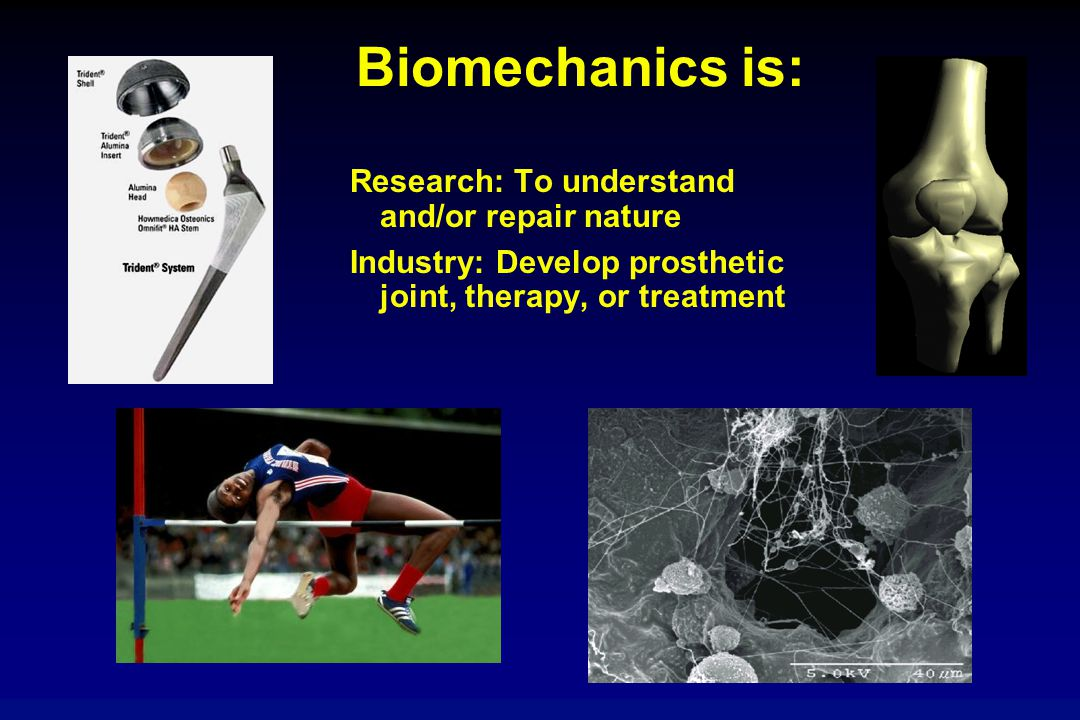 Biomechanics is: Research: To understand and/or repair nature Industry: Develop prosthetic joint, therapy, or treatment