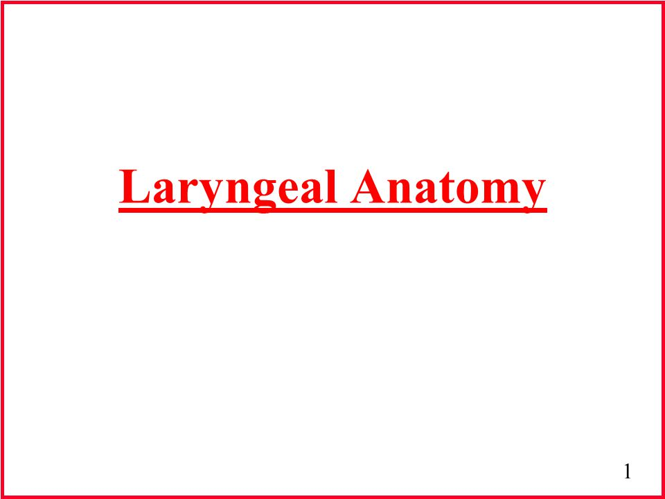 2 Phonation Generation of a voiced sound Accomplished with the larynx (voice box) Voiceless sounds: open vocal folds Voiced sounds: closed vocal folds