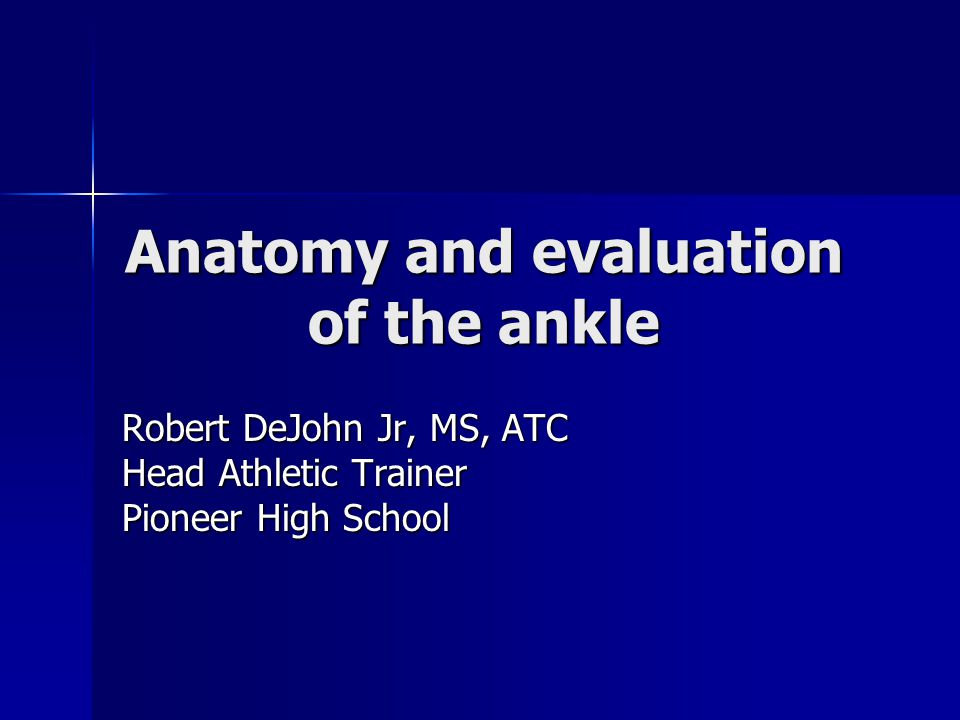 Ankle Anatomical Structures Anatomical Structures –Tibia –Fibular –Talus