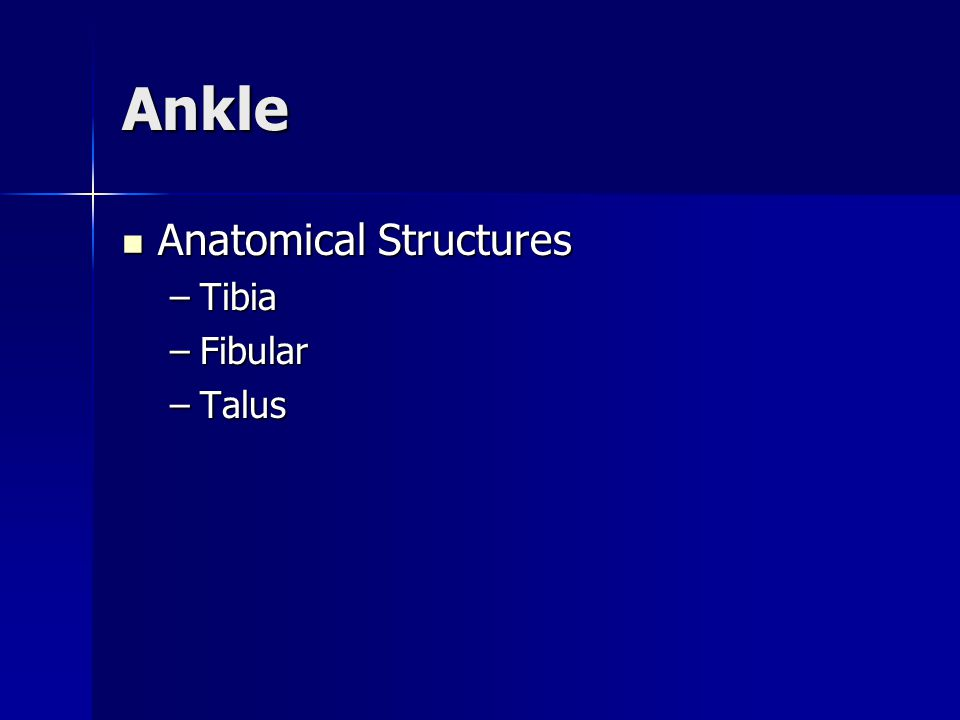 Ankle Ligaments There are three lateral ligaments predominantly responsible for the support and maintenance of bone apposition (best possible fit).