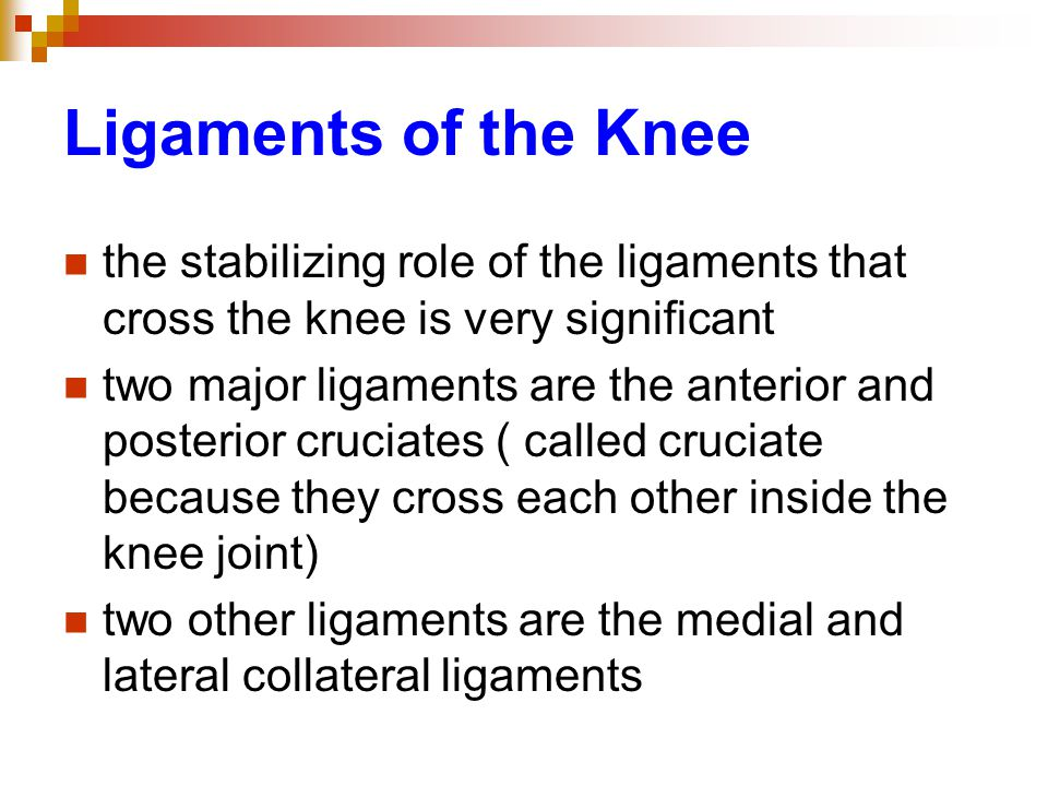 Ligaments of the Knee the stabilizing role of the ligaments that cross the knee is very significant two major ligaments are the anterior and posterior cruciates ( called cruciate because they cross each other inside the knee joint) two other ligaments are the medial and lateral collateral ligaments