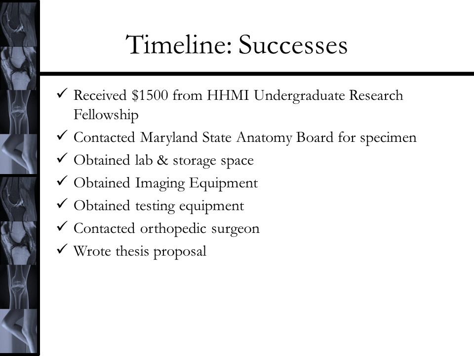Timeline: Successes Received $1500 from HHMI Undergraduate Research Fellowship Contacted Maryland State Anatomy Board for specimen Obtained lab & stor