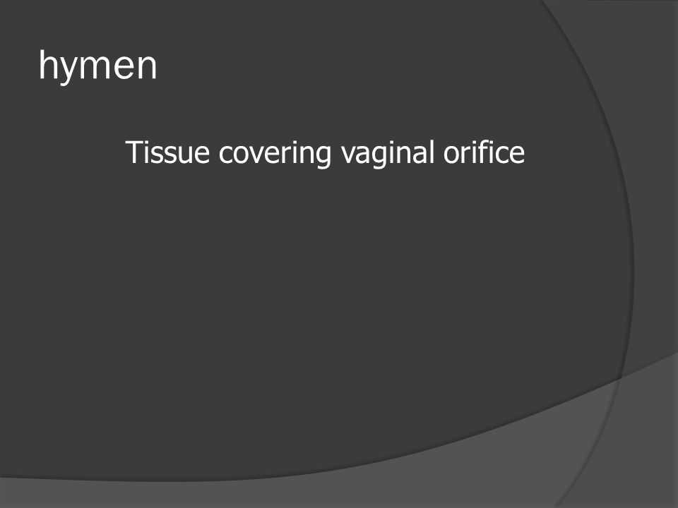 hymen Tissue covering vaginal orifice