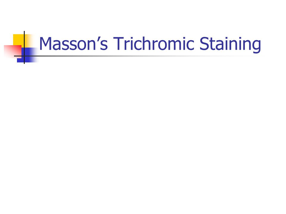 Masson's Trichromic Staining