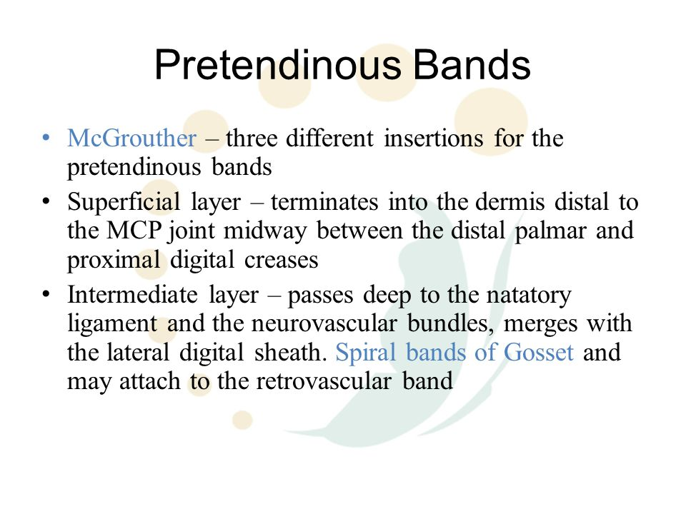 Pathologic Anatomy Normal fascial structures in the hand and digits are referred to as bands Diseased fascial structures in Dupuytren's are referred to as cords Palm – Pretendinous cord resulting in MCPJ flexion Does not affect the nv bundles - Vertical cords can cause pain and triggering