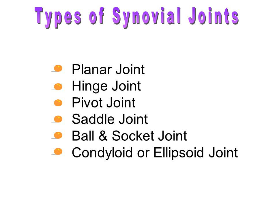 Planar Joint Hinge Joint Pivot Joint Saddle Joint Ball & Socket Joint Condyloid or Ellipsoid Joint