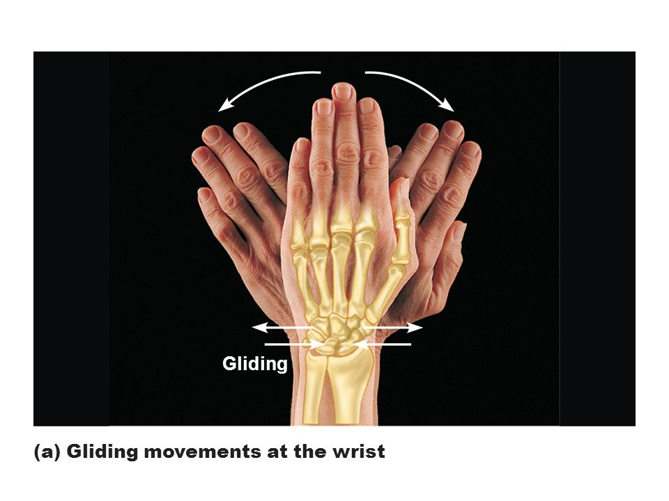 Figure 8.5a Movements allowed by synovial joints. Gliding (a) Gliding movements at the wrist