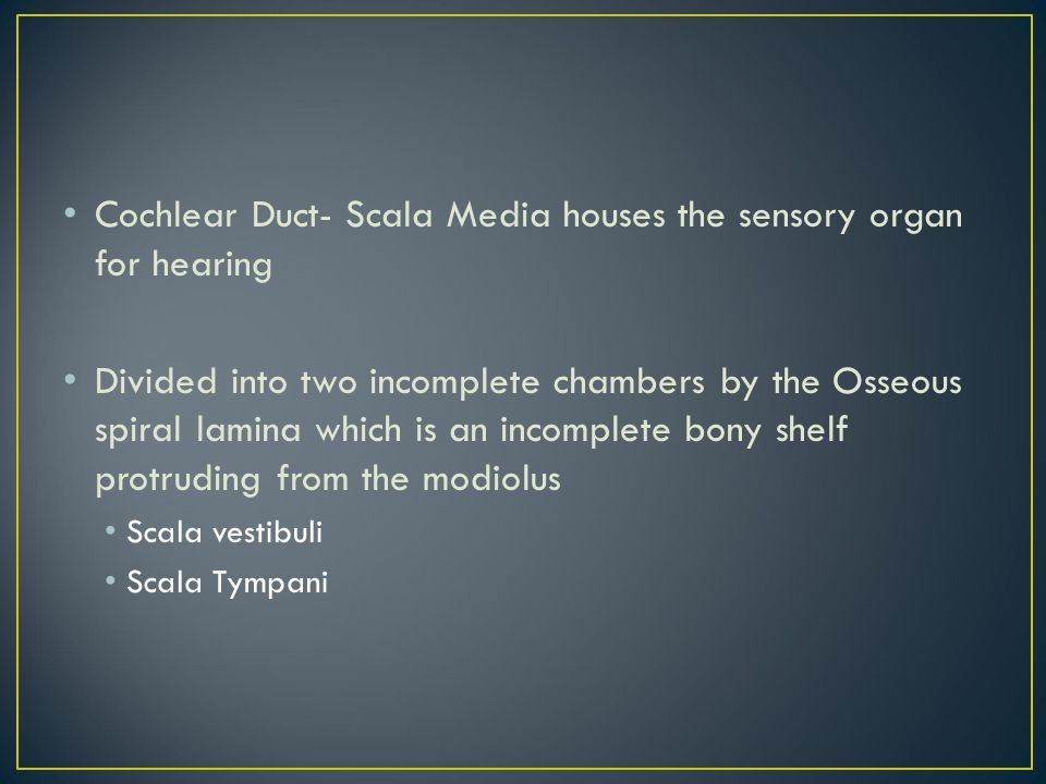 Cochlear Duct- Scala Media houses the sensory organ for hearing Divided into two incomplete chambers by the Osseous spiral lamina which is an incomple