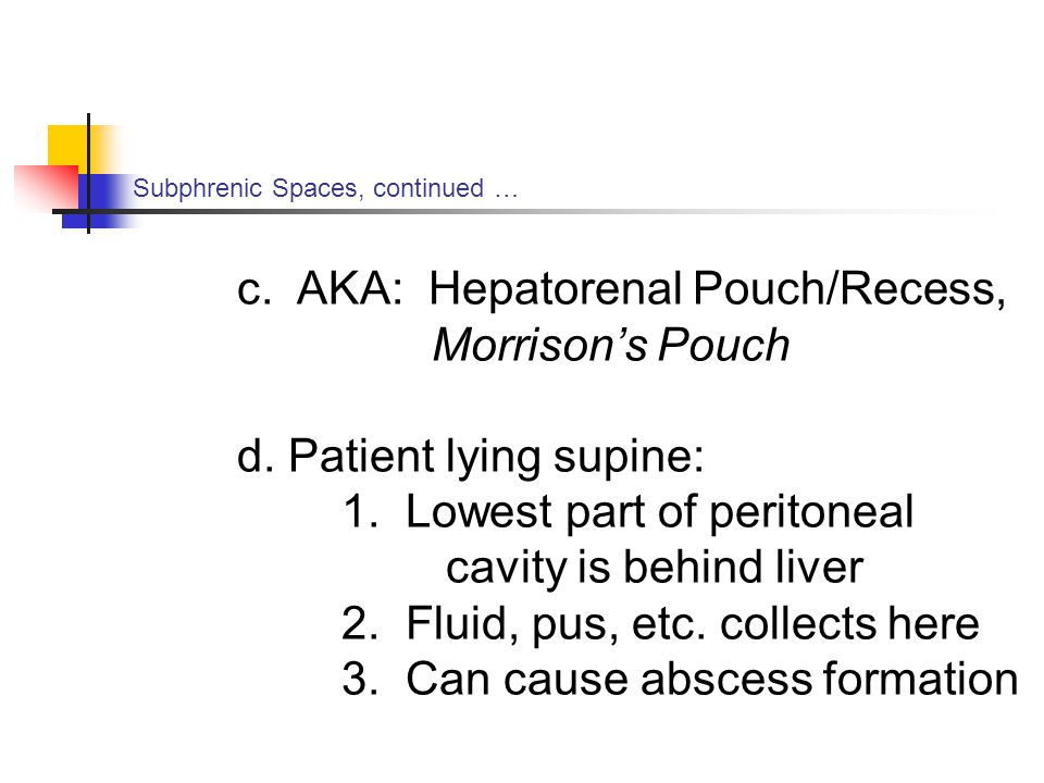 Subphrenic Spaces, continued … c.AKA: Hepatorenal Pouch/Recess, Morrison's Pouch d.