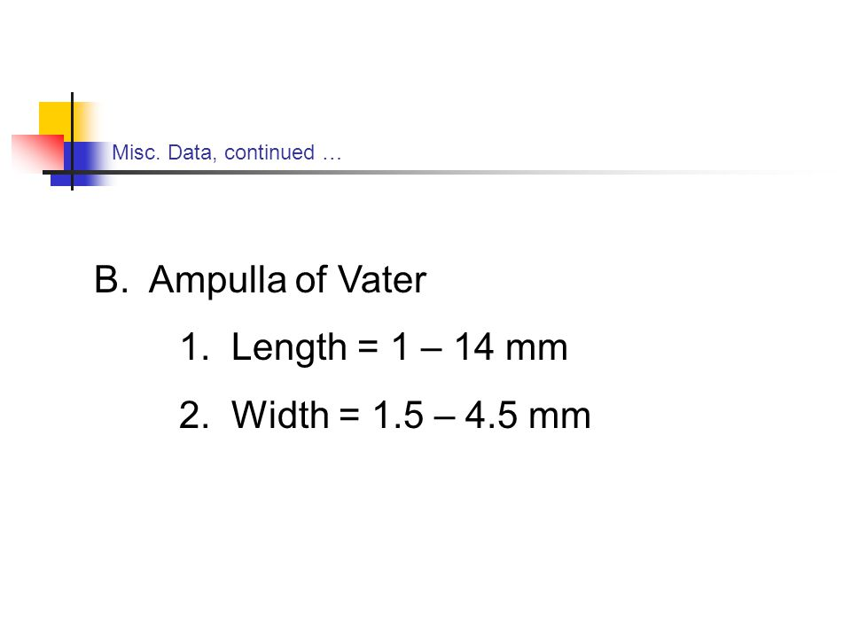 Misc. Data, continued … B. Ampulla of Vater 1. Length = 1 – 14 mm 2. Width = 1.5 – 4.5 mm