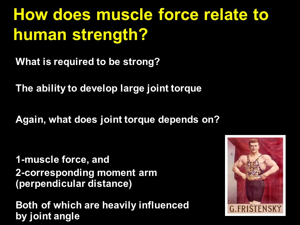 What is required to be strong? The ability to develop large joint torque Again, what does joint torque depends on? 1-muscle force, and 2-corresponding