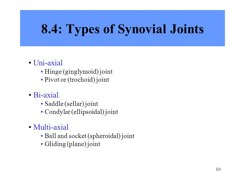 10 8.4: Types of Synovial Joints Uni-axial Hinge (ginglymoid) joint Pivot or (trochoid) joint Bi-axial Saddle (sellar) joint Condylar (ellipsoidal) joint Multi-axial Ball and socket (spheroidal) joint Gliding (plane) joint