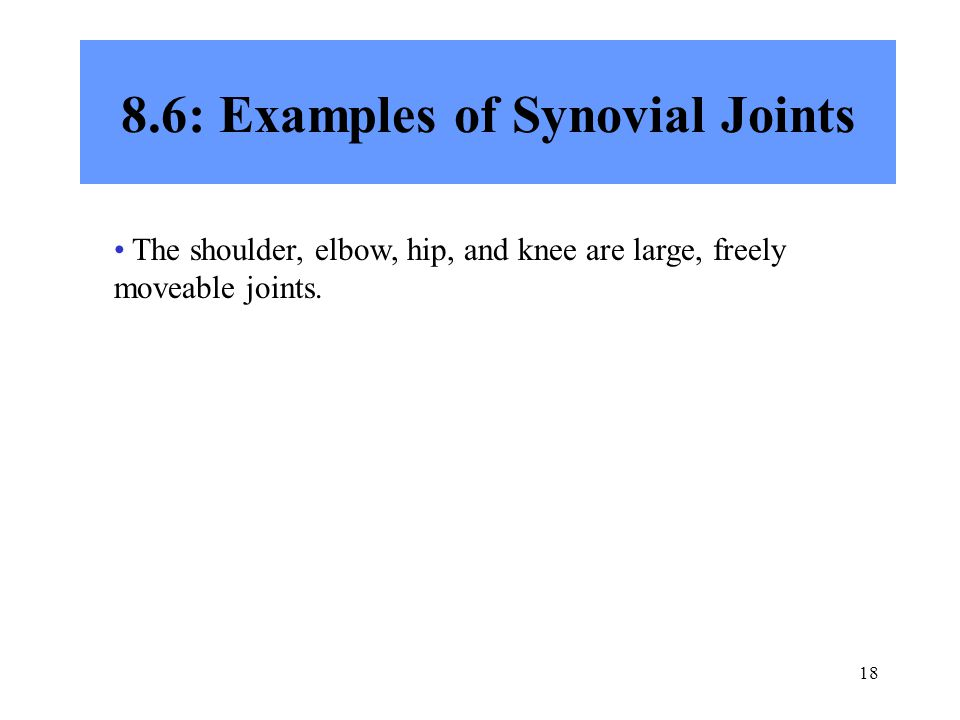 18 8.6: Examples of Synovial Joints The shoulder, elbow, hip, and knee are large, freely moveable joints.
