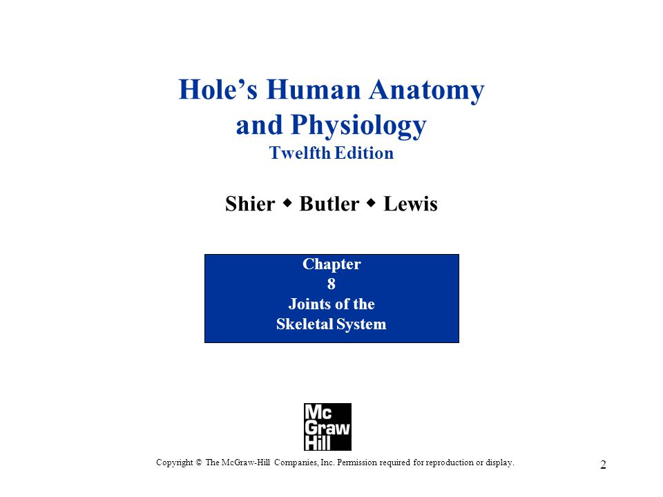 2 Hole's Human Anatomy and Physiology Twelfth Edition Shier  Butler  Lewis Chapter 8 Joints of the Skeletal System Copyright © The McGraw-Hill Companies, Inc.
