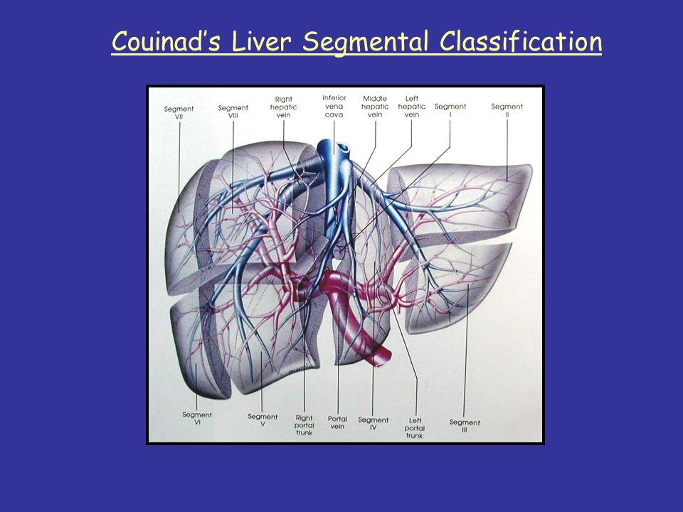 Couinad's Liver Segmental Classification