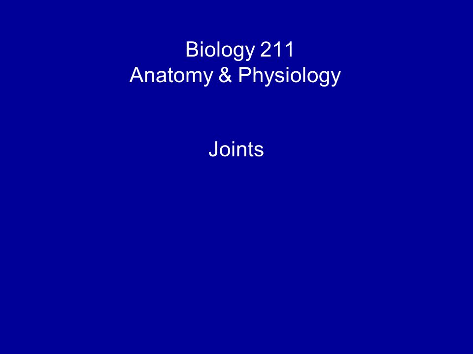 Biology 211 Anatomy & Physiology I Joints