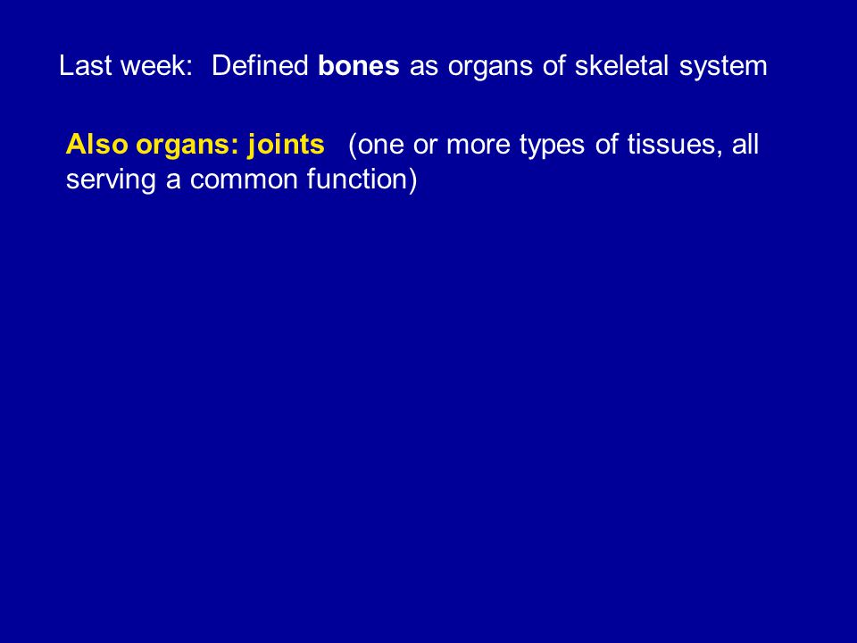 Synovial joints stabilized by a) Shapes of the articular surfaces of bones b) Ligaments c)