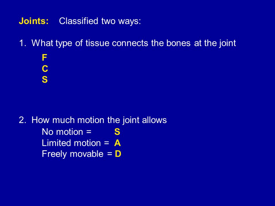 Joints: Classified two ways: 1. What type of tissue connects the bones at the joint 2.