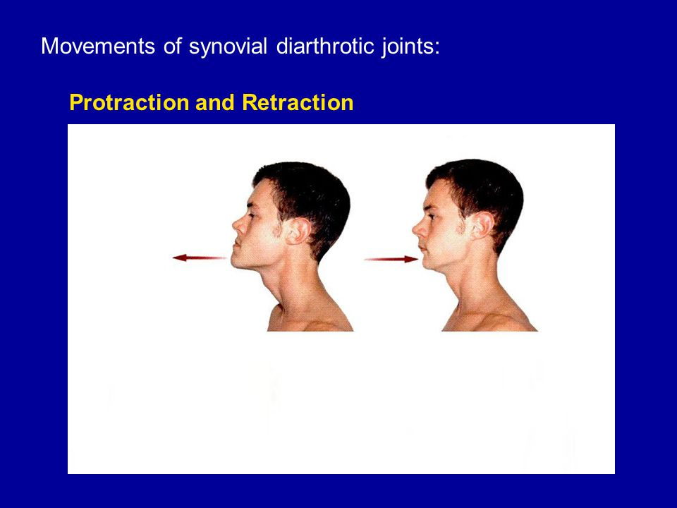 Movements of synovial diarthrotic joints: Protraction and Retraction