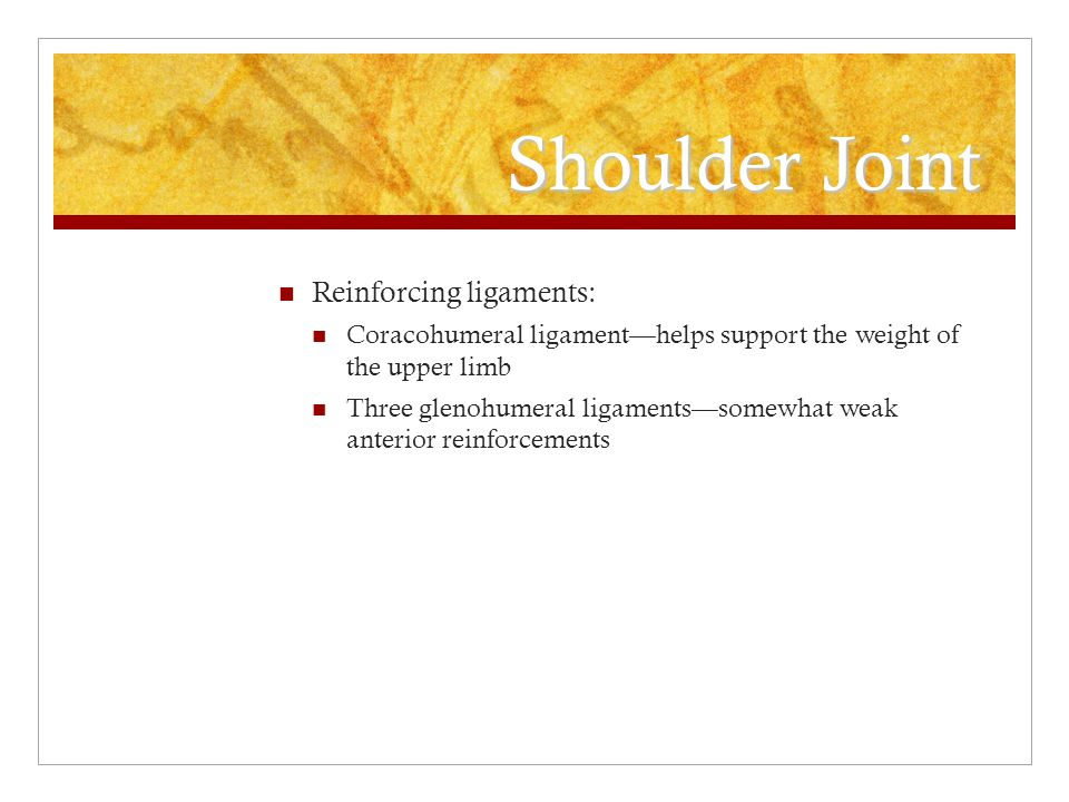 Shoulder Joint Reinforcing ligaments: Coracohumeral ligament—helps support the weight of the upper limb Three glenohumeral ligaments—somewhat weak ant