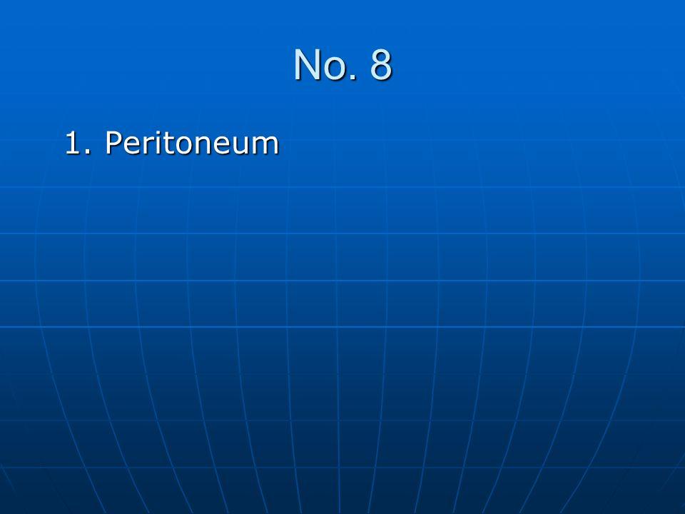 No. 8 1. Peritoneum 1. Peritoneum