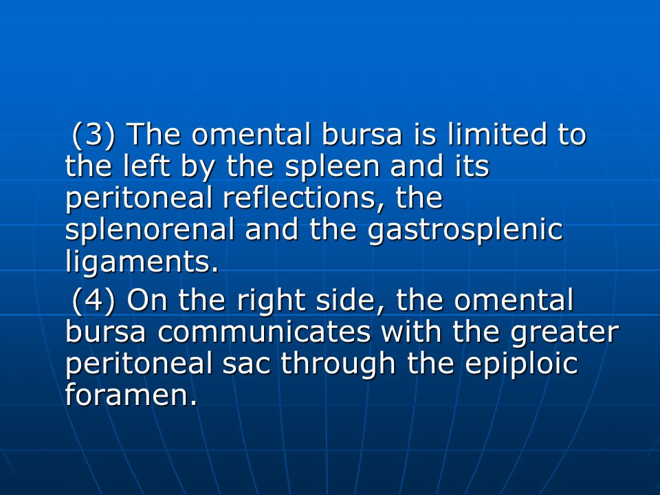 (3) The omental bursa is limited to the left by the spleen and its peritoneal reflections, the splenorenal and the gastrosplenic ligaments. (3) The om