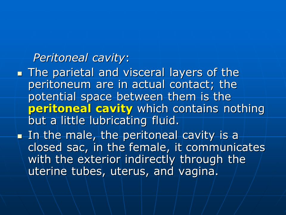 Peritoneal cavity: Peritoneal cavity: The parietal and visceral layers of the peritoneum are in actual contact; the potential space between them is th