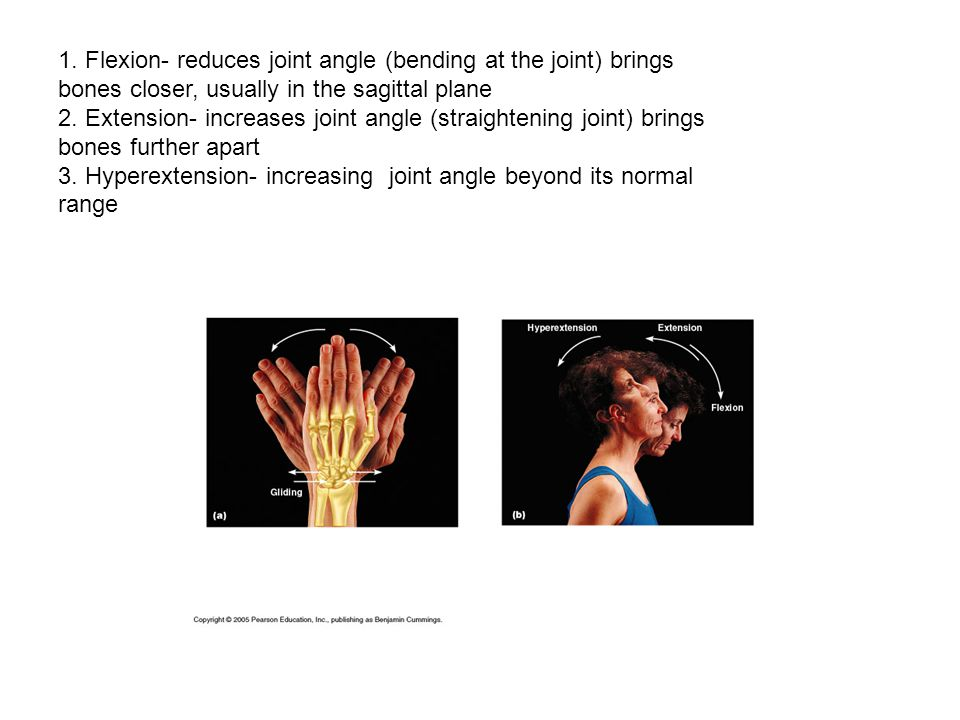 1. Flexion- reduces joint angle (bending at the joint) brings bones closer, usually in the sagittal plane 2. Extension- increases joint angle (straigh