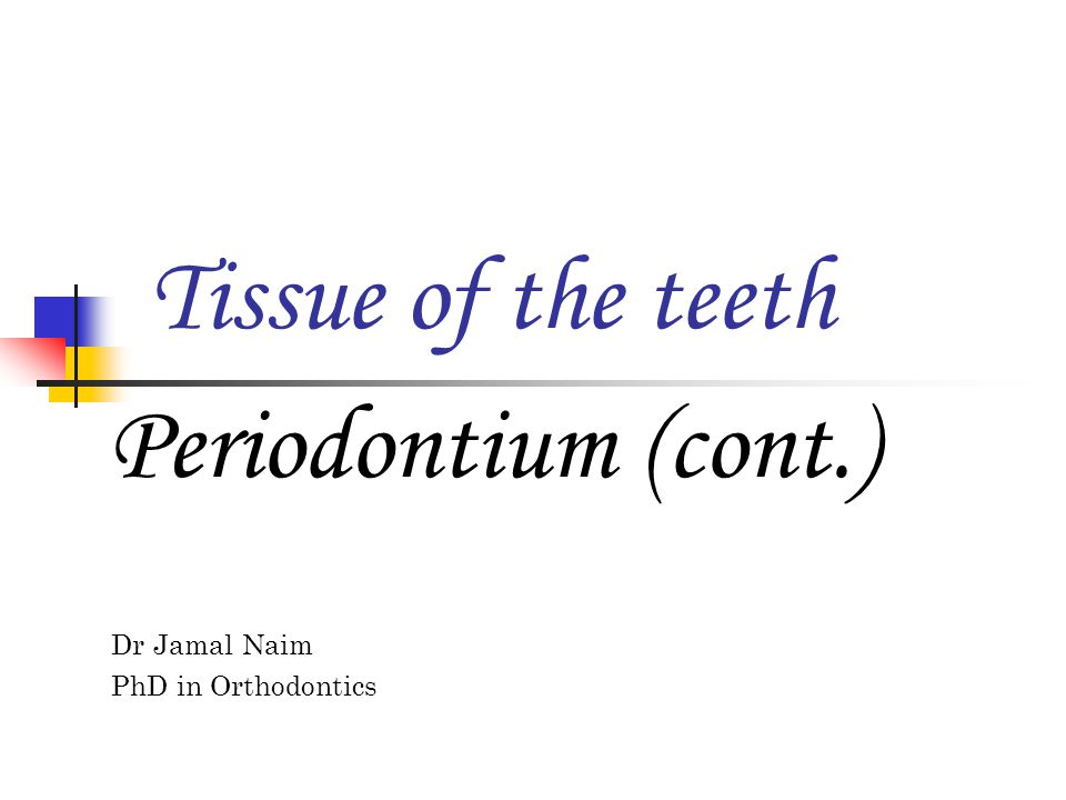 Dr Jamal Naim PhD in Orthodontics Tissue of the teeth Periodontium (cont.)
