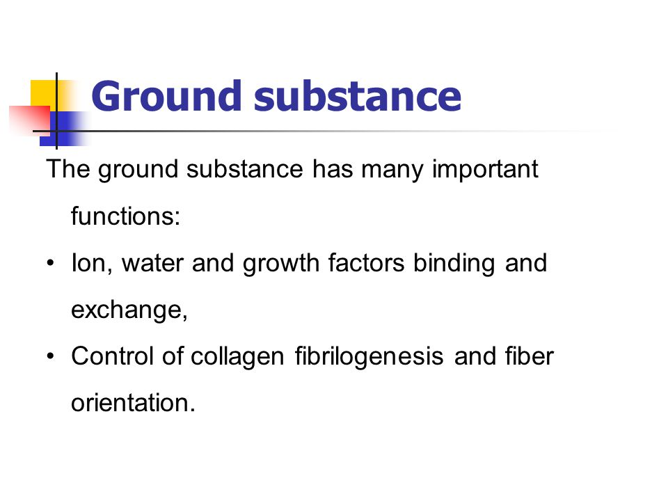Ground substance The ground substance has many important functions: Ion, water and growth factors binding and exchange, Control of collagen fibrilogen