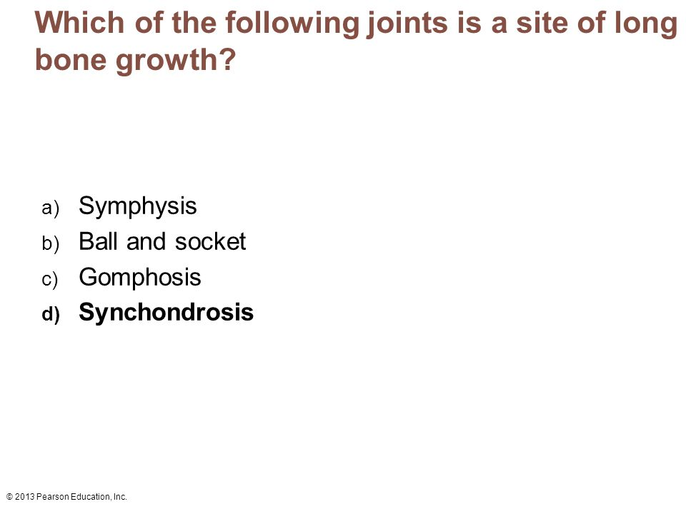 © 2013 Pearson Education, Inc. Which of the following joints is a site of long bone growth? a) Symphysis b) Ball and socket c) Gomphosis d) Synchondro