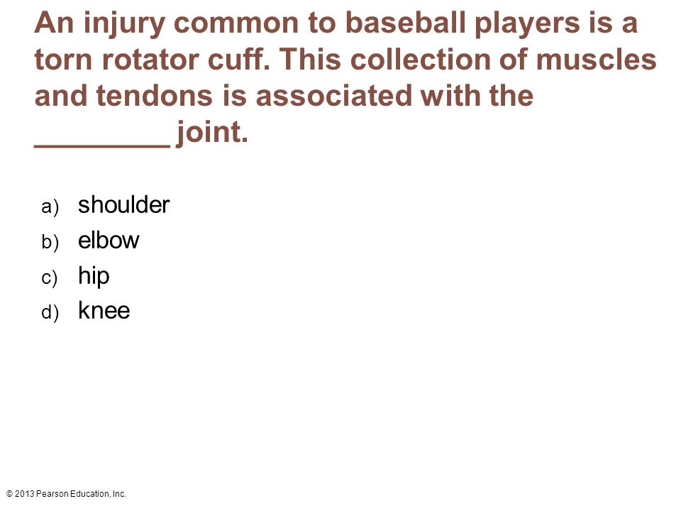 © 2013 Pearson Education, Inc. An injury common to baseball players is a torn rotator cuff. This collection of muscles and tendons is associated with