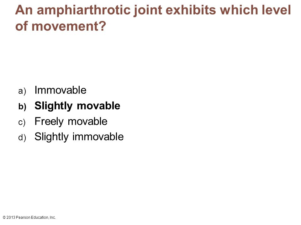 © 2013 Pearson Education, Inc. An amphiarthrotic joint exhibits which level of movement? a) Immovable b) Slightly movable c) Freely movable d) Slightl